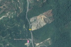 Land for sale in Pahang