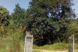 Land for sale in Batang Kali, Selangor