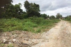 Land for sale in Kampung Ketapang Tengah, Pahang