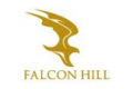 Falcon Hill Development Limited